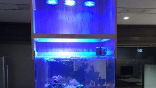 必見! 水槽用 照明 でおすすめの LEDライト