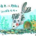 金魚が砂利を飲み込んじゃった! 対処法について ~金魚素人育成記2 ~