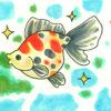 大丈夫! 金魚は コケ を食べると元気に育つ!水槽コケ対策も一石二鳥