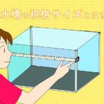 アクアリウム水槽の規格サイズとは