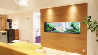 オフィスに置く熱帯魚水槽、その5つの効果とは