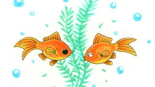 金魚と一緒に入れる水草 ベスト10