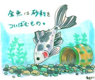 金魚が砂利を飲み込んだ!その原因と対処方法をご紹介!