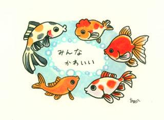 金魚の飼い方・選び方について~金魚素人育成記5 ~