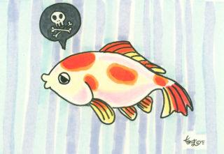 【金魚の病気まとめ】金魚の飼育で気をつけたい病気とその対策とは