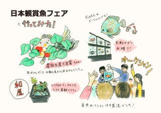 アクアリウムの祭典! 日本観賞魚フェア へ行ってきた