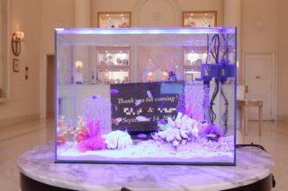 アクアリウムでハッピー ウエディング 結婚式の演出に美しい水槽はいかがですか【アクアリウムウエディングの提案】