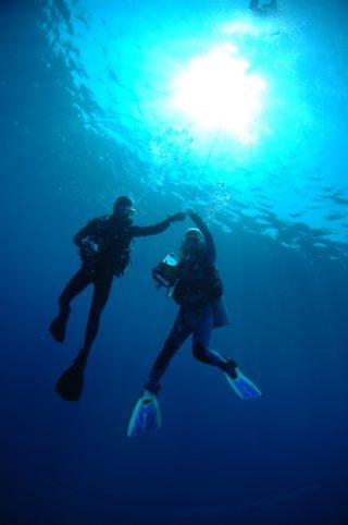 人工海水と天然海水の違い