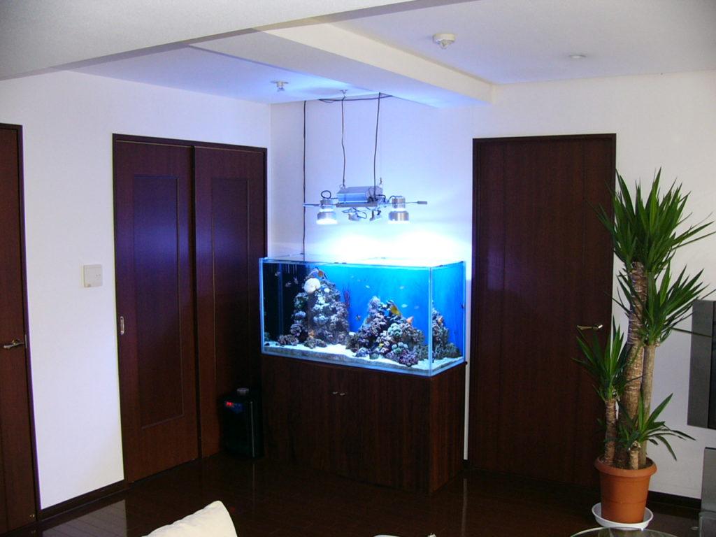 熱帯魚の水槽がありますが、湿気で部屋がカビませ …