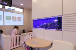 熱帯魚水槽を病院・クリニック・歯科医院に設置する理由とは?