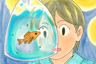 金魚すくい の 金魚を長生きさせる方法!