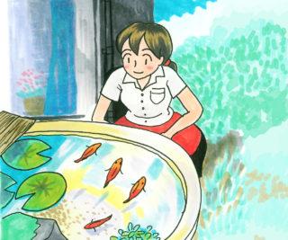日光と上手に付き合う!屋外で金魚やメダカを飼うためのポイント