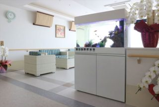 介護施設・老人ホームに熱帯魚水槽!! 素敵な事例5台 メリット5つ