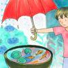 雨の多い季節・梅雨の魚の屋外飼育について