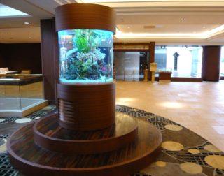 円柱水槽(丸型水槽)とは その価格や作り方、魅力を紹介!