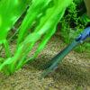 水草のトリミングで美しいアクアリウムを維持しよう
