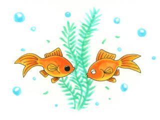 【プロがおすすめする】金魚と一緒に入れる水草 ベスト10