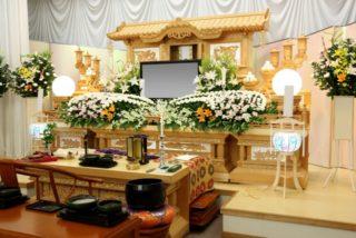 熱帯魚のお葬式について~熱帯魚が死んでしまった時の5つの選択肢~
