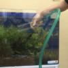 熱帯魚水槽の掃除やメンテナンス時にありがちな失敗例10選