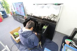 【プロが教える】熱帯魚水槽を簡単に設置するコツ