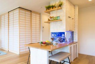 おしゃれなインテリアの一部として お部屋に熱帯魚水槽を設置しよう!