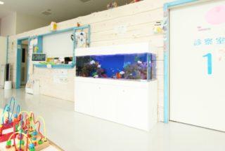 30事例をご紹介! 熱帯魚水槽を病院に設置するとこんなに癒やされる!