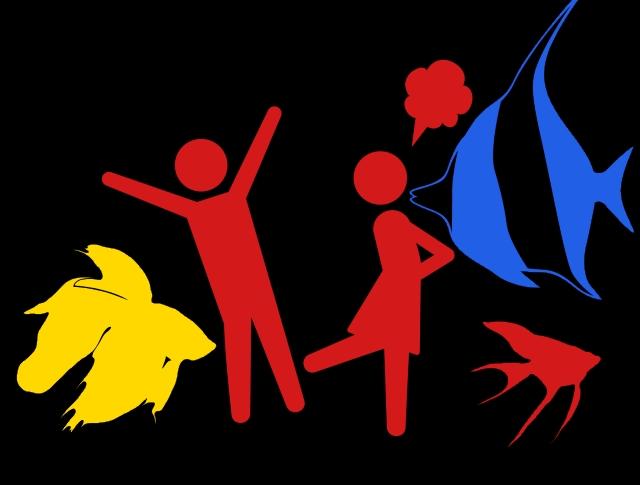 水槽内で魚同士が喧嘩をしてしまう!原因と解決方法