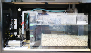 オーバーフロー式!濾過の仕組み(システム)とメリットを解説