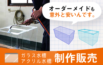 ガラス・アクリル水槽、オーダーメイドのことなら東京アクアガーデン公式オンラインショップ