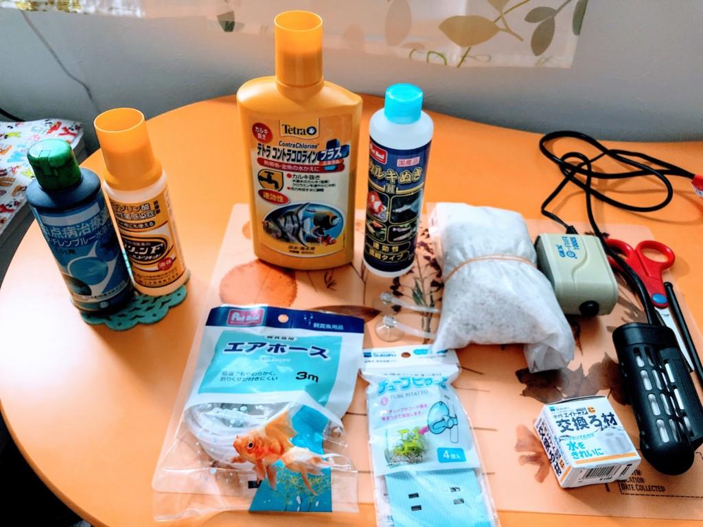 【初心者向け】熱帯魚飼育に最低限必要な器具、メンテナンス道具とは?