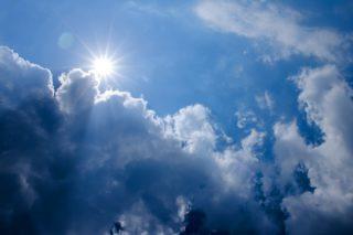 直射日光はダメ?太陽光の紫外線は熱帯魚水槽に悪影響があるのか?