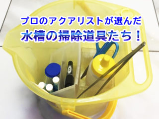水槽メンテナンスのプロが使用!便利な水槽掃除道具8選をご紹介します