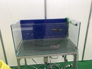 プロが教える!熱帯魚水槽の片づけ・撤去を効率良く迅速に行う方法