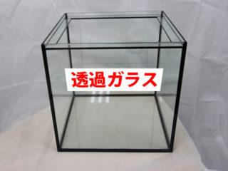 高透過ガラスで透明感の高い水槽をつくろう!製品事例と入手方法をご紹介