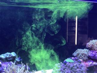 添加剤特集!! サンゴ・イソギンチャクに効果的な添加剤の選び方と使用方法とは