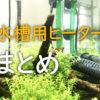 【完全版】水槽用ヒーターのすべて!おすすめ商品、電気代、置き方も!