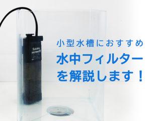 水中フィルターは小型水槽に最適!種類と特徴、おすすめ製品を解説!