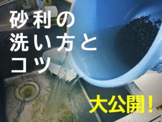 砂利の洗い方!プロ直伝の洗い方と汚れを落とすコツ、砂利の性質を大公開
