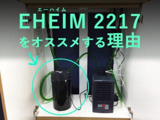 プロも絶賛!エーハイム2217を解説!90cmからの水槽におすすめ!