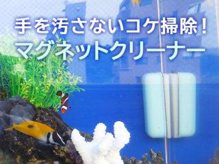おすすめのマグネットクリーナーを徹底比較!手を汚さない水槽掃除とは!