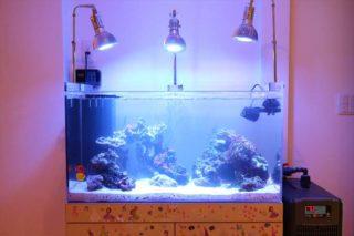 水槽照明を吊り下げよう! 照明を吊り下げるメリットと方法を解説します
