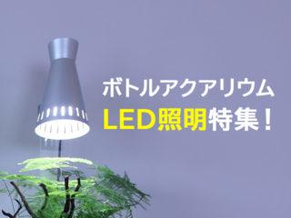 ボトルアクアリウムのLED特集!小さなボトルにおすすめ照明と選定のコツ