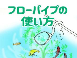 フローパイプの使い方と種類!水流をゆるやかにして魚や水草を守ろう!