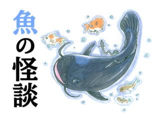 【夏の特別編】あの観賞魚は妖怪だった?魚にまつわる世界の伝説・怪談!