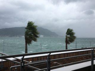 水槽の台風対策まとめ!停電・断水・暴風から魚を守れ!緊急時の対処法!