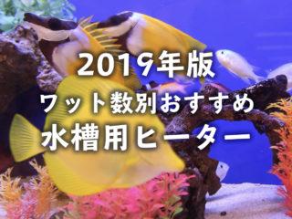 【2019年版】水槽用ヒーター特集!ワット数別おすすめランキング!