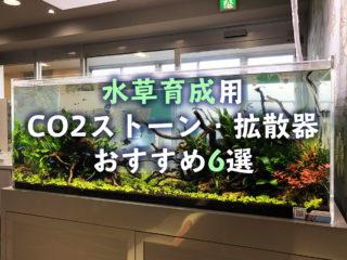 【2019年版】水草育成用CO2ストーン・拡散器おすすめ6選と選定法