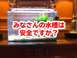 みなさんの水槽は安全ですか?プロが着目する熱帯魚水槽の点検ポイント5つ