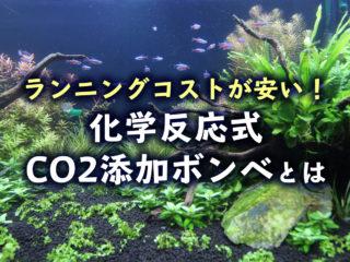 ランニングコストが安い!水草水槽に化学反応式CO2ボンベが超おすすめ!