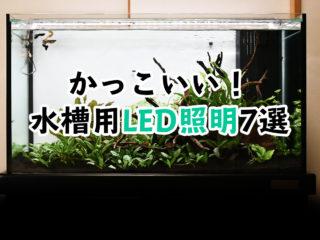 かっこいい水槽用LED照明7選!見た目も機能もスタイリッシュな照明!